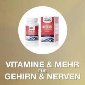 Banner 4 Vitamine für Gehirn & Nerven